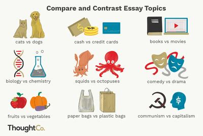 Compare And Contrast Essay: How-To, Structure, Examples